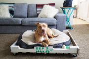 Фото 27 Стильная мебель без ущерба бюджету: делаем диван из поддонов своими руками