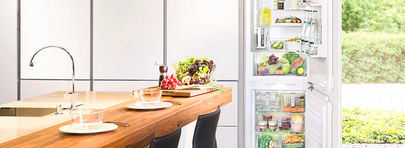 Выбираем узкий холодильник для кухни: рейтинг моделей, характеристики и сравнение