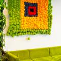 Вертикальный сад в квартире: 60+ потрясающих идей зеленого уголка своими руками фото