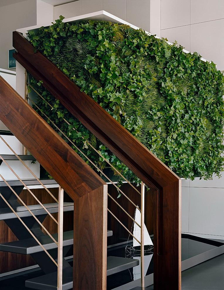 Вертикальный сад в квартире Лучшие идеи своими руками ��