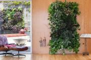 Фото 17 Вертикальный сад в квартире: 60+ потрясающих идей зеленого уголка своими руками