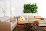 Фото 5 Вертикальный сад в квартире: 60+ потрясающих идей зеленого уголка своими руками
