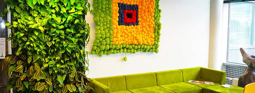 Вертикальный сад в квартире: 60+ потрясающих идей зеленого уголка своими руками