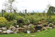 Фото 5 Декоративные травы и злаки для сада (60+ фото с названиями): полезные советы садоводов и ландшафтных дизайнеров