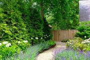 Фото 20 Декоративные травы и злаки для сада (60+ фото с названиями): полезные советы садоводов и ландшафтных дизайнеров