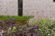 Фото 26 Декоративные травы и злаки для сада (60+ фото с названиями): полезные советы садоводов и ландшафтных дизайнеров