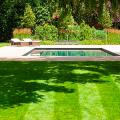 Идеальный газон своими руками: как и когда лучше всего сеять газонную траву? фото