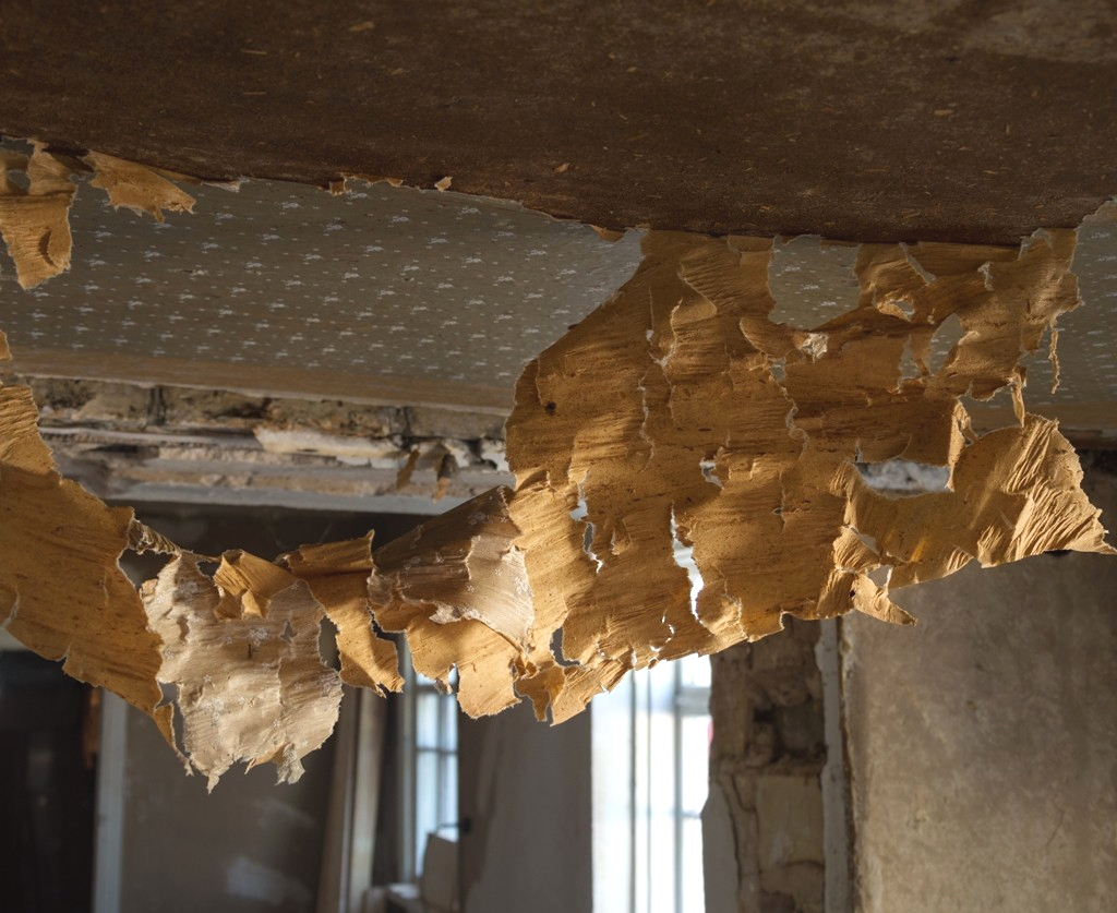 Узоры для натяжного потолка из гипсокартона (70 фото) ✅️Идеи
