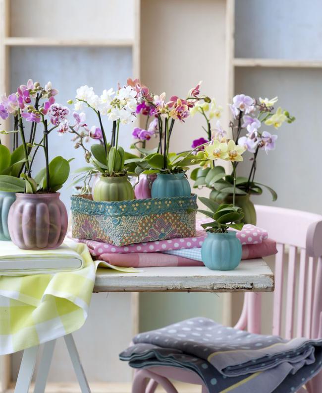Роскошные цветы помогут преобразить интерьер