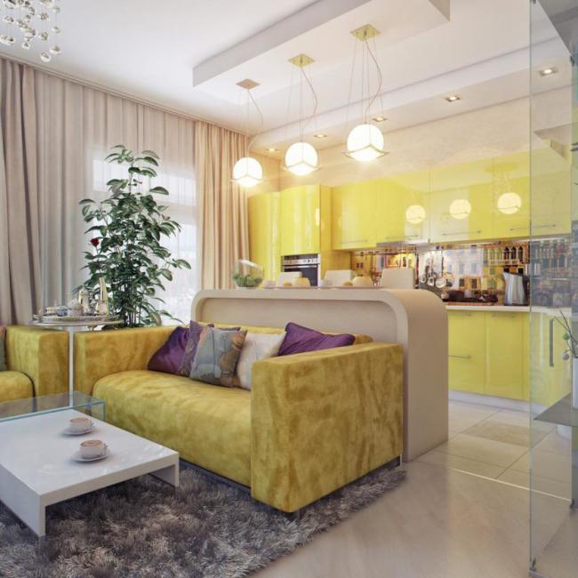 Освещение и барная стойка помогут зонировать студийный проект квартиры