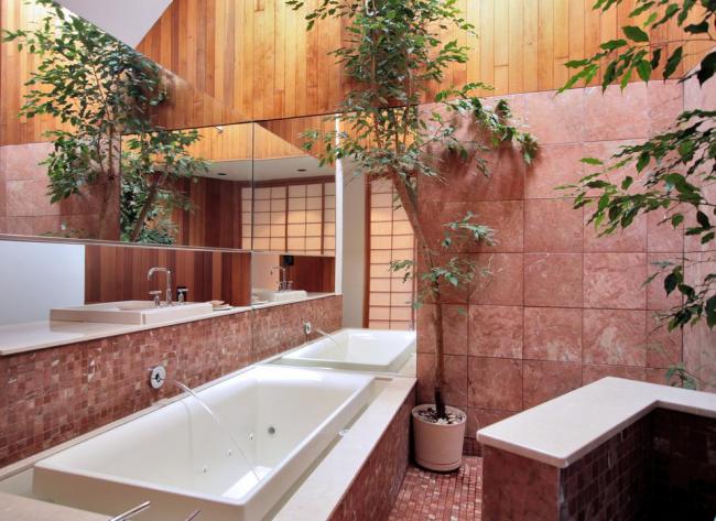 Фикус elastica любит влажность, поэтому в ванной комнате с окном будет чувствовать себя отлично