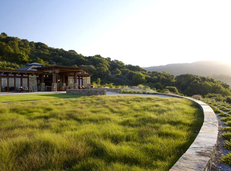 """""""Дикий"""" вид газона в пляжном стиле. Для создания такого газона подходит высокая трава типа красной овсяницы"""