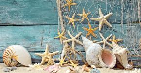 Море хендмейда: что можно сделать из ракушек? 95+ потрясающих идей для дома фото