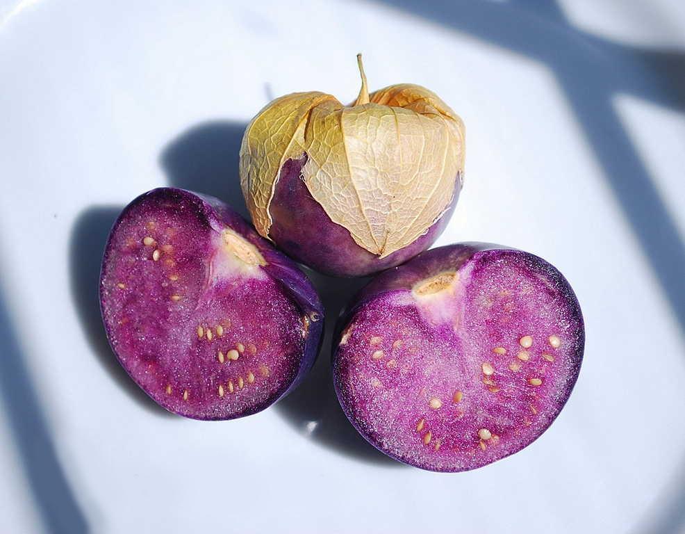 Ярко-фиолетовые плоды физалиса